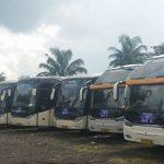 bus pariwisata semarang 2019